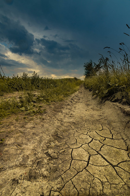 The scorched Earth and the rainstorm