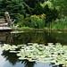 Botanická zahrada hl. m. Prahy nabízí mnoho podobných krásných zákoutí a posezení, foto: Petr Nejedlý