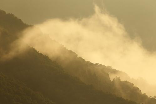 fukui katsuyama japan morning nature landscape japon fog mountains 山 勝山 福井 日本 朝 霧