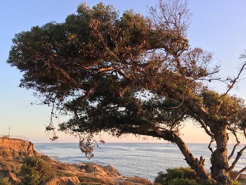 San Diego | by sergei.gussev