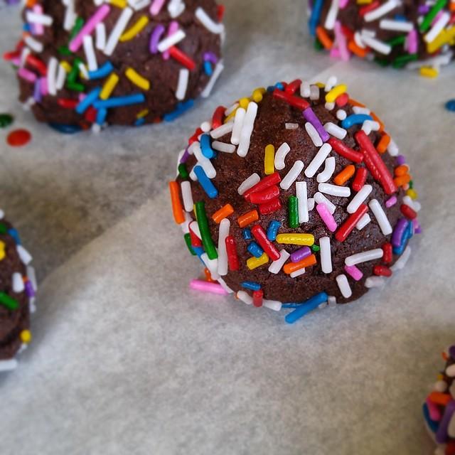 Fudge Cookie Bites