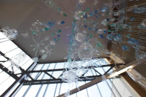 The Kingdom of Plastic Protista