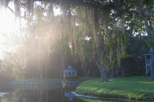 outdoor florida canon sunrise water nature gazebo sun pond spanishmoss