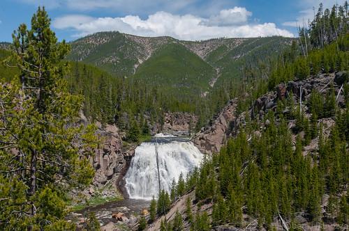 gibbonfalls landscape yellowstone yellowstonenationalpark waterfall falls nature coth5