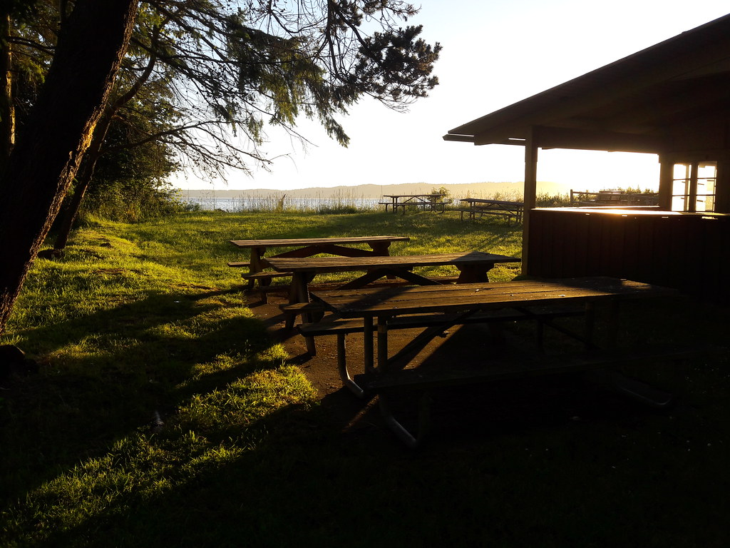 Superb Tree And Picnic Tables Camp Center Building Saltwater St Download Free Architecture Designs Scobabritishbridgeorg