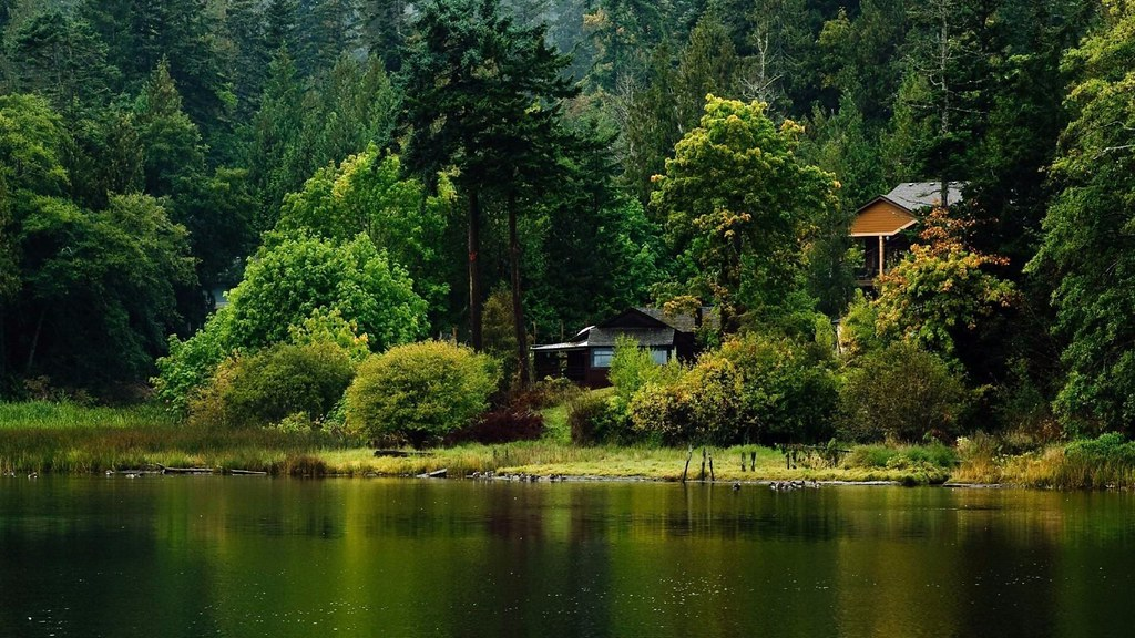 Lakeside Cabin Nature 4K Wallpapers Free 4K Wallpaper | Flickr