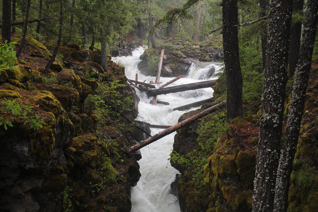 The upper Rogue River, as it pours into the gorge - Explored 6/13/17