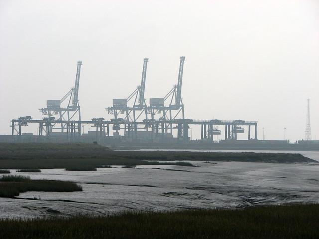 Grain Container Terminal