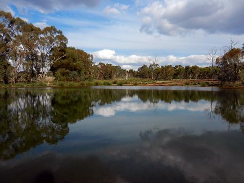 western australia bannister landscape tree lake forest bush sky cloud eucalyptus dana iwachow nikon s9200
