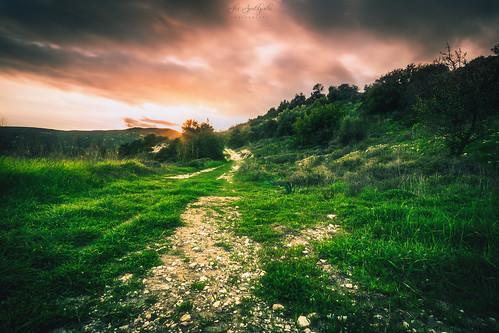 green landscape landscapephotography longexposure sunset vegetation clouds sky magicsky bulb cyprus sony sonya6000 ilce6000 samyang samyang12mmf20ncscs manfrottobefree