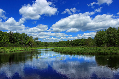 pennsylvania monroecounty tobyhannacreek poconos landscape pond wetland sky clouds cumulus summer nature creativecommons