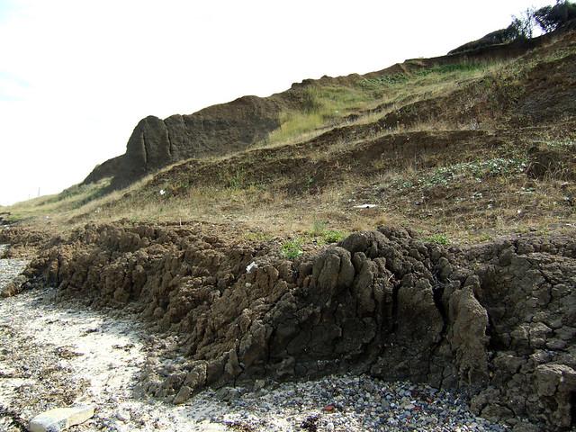 The coast between Leysdown-on-Sea and Warden