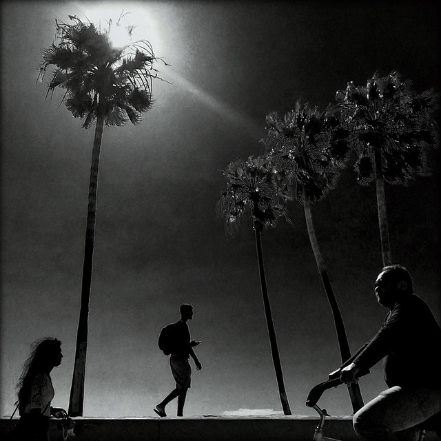 Under a California Sun