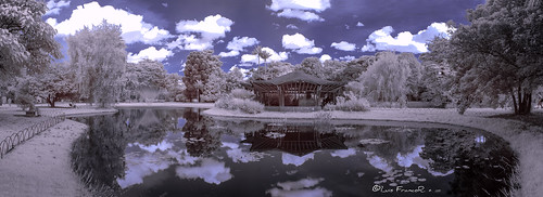 infrared infrarrojos botanicgarden infraredpark