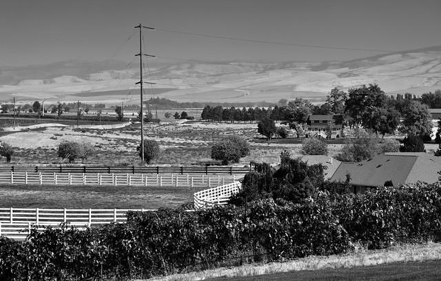 The Walla Walla Valley American Viticultural Area (Black & White)
