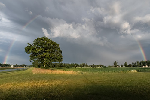 canoneos5dmarkiv poem rainbow evening sunset golden atardecer field corn michigan clouds storm cliche poetry tree canon rokinon 24mm midmichigan midland lowangle shadows green