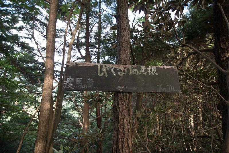 20150808-空木岳-0089.jpg