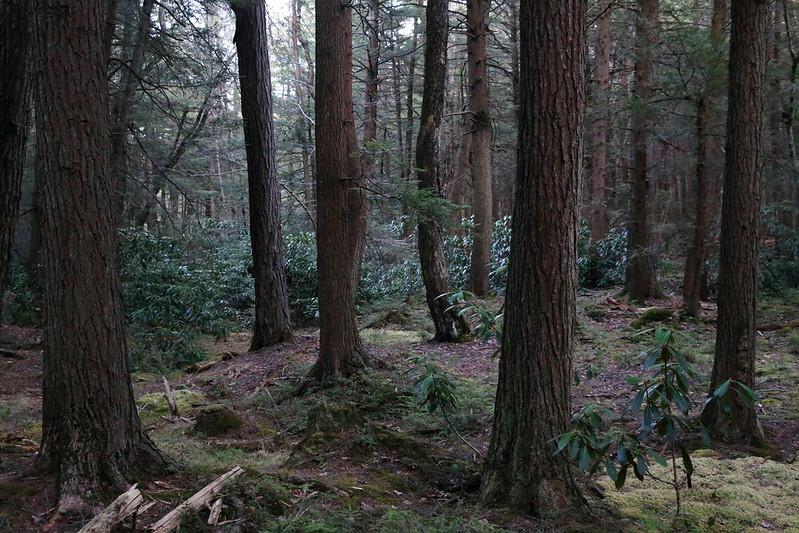 Raymond B. Winter State Park