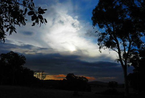 western australia bannister landscape sunset sun eucalyptus tree bush sky cloud dana iwachow nikon s9200
