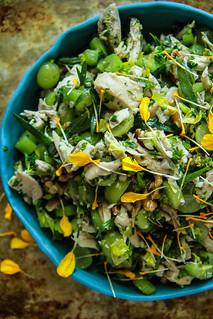 Chicken Tarragon Salad from HeatherChristo.com | by Heather Christo