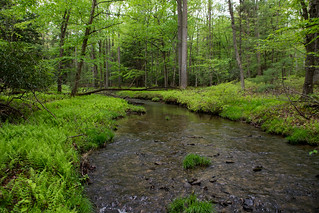 Big Poe Creek