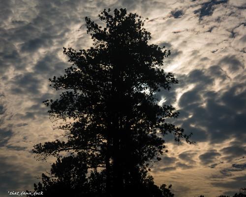 nature clouds dawn sunrise