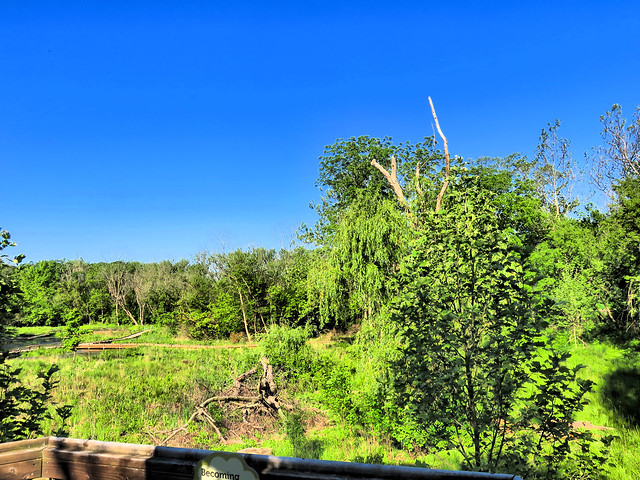 View from Lippold Park pavillion 20170601
