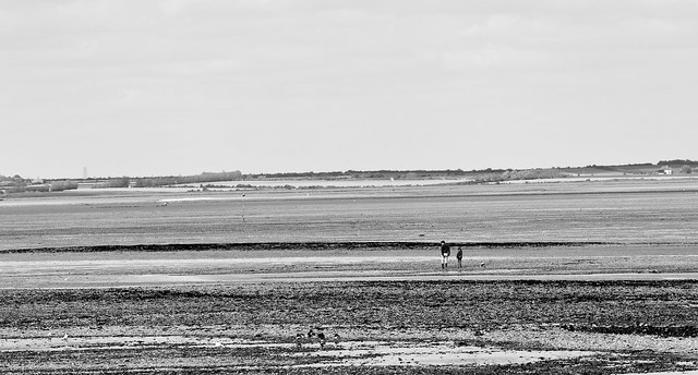 Looking across to Sheppey.