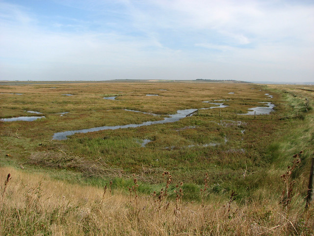 Near Spitend Point, Ise of Sheppey