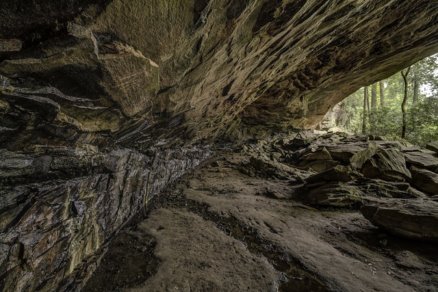 Rock Shelter, Colditz Cove SNA, Fentress County, Tennessee