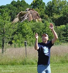 Osprey Release  By Raptor,Inc.