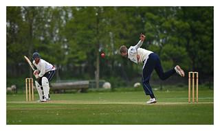 Cricket 17 | by fransmartens667