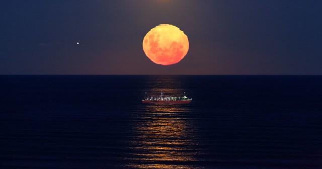 IMG_8062 Golden moonlight
