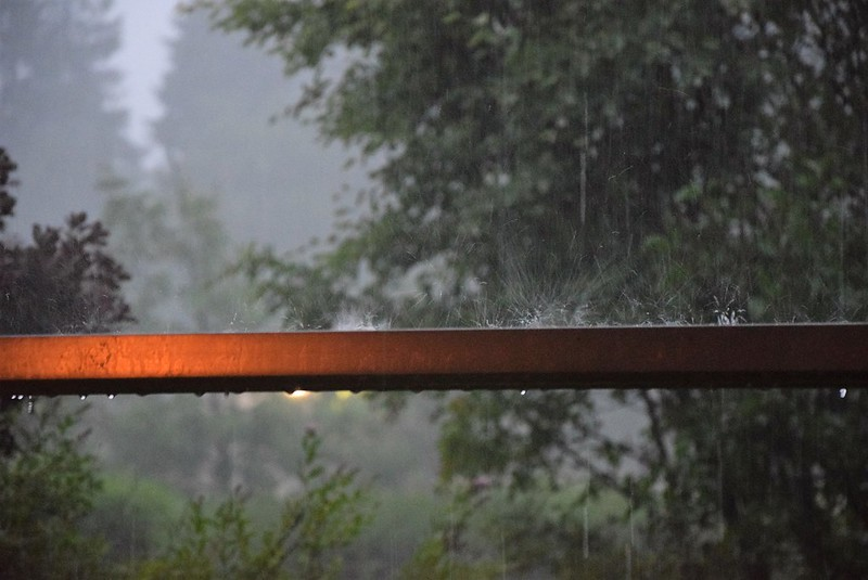 Rain 04.06 (3)