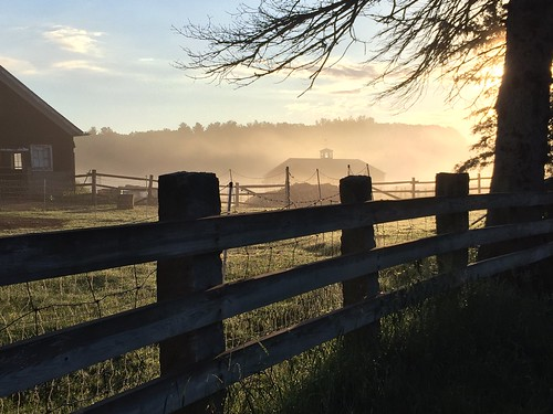 iphone sunrise mist fence farm charm newengland stowma shadow light warm