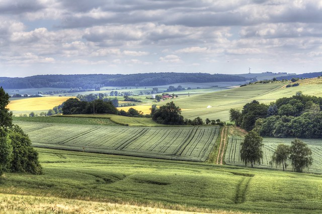 Farmer's Country