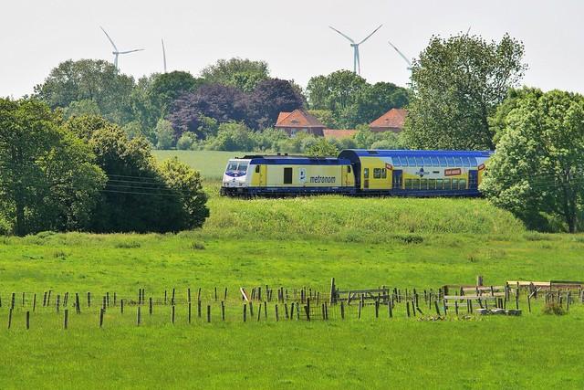 metronom in the fields