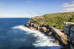 Royal National Park, Sydney AUS