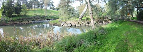 Merlynston and Merri Creek Confluence - 100 photos of Merlynston Creek