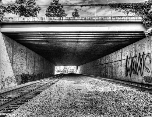 blackandwhite monochrome traintrack bridge pointofview graffiti gravel structure architecture