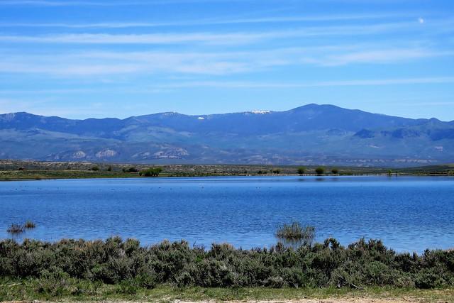 Roadside Reservoir