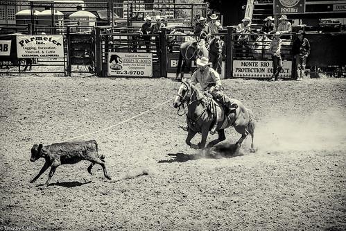 2017 calfiornia duncanmills horses riders rodeo calf roping bw monochrome classic cowboy russian river