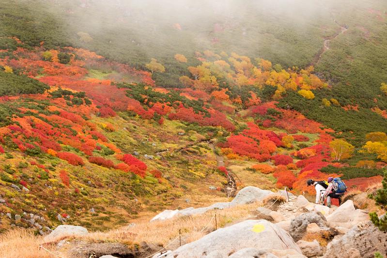 20150918-大雪山黒岳-0746.jpg