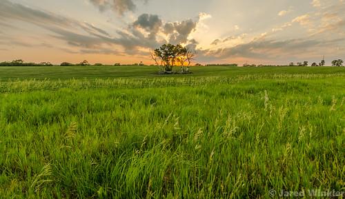 nebraska lincoln hickman sunset rural farm