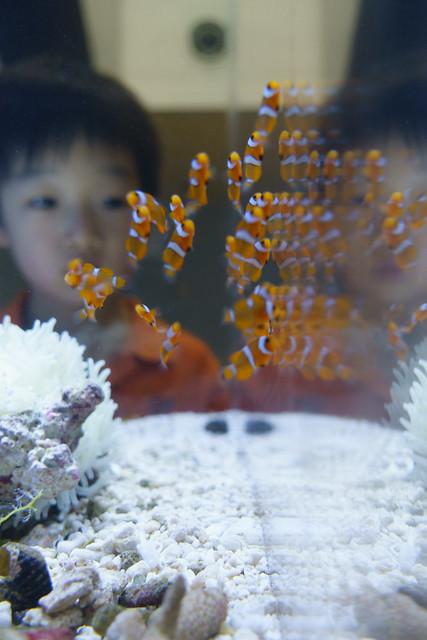 20170613 Port of Nagoya Aquarium 6
