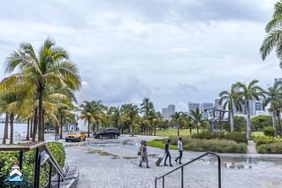 NG Cruise Workshop Miami 2017 - 10 | by Eva Blue