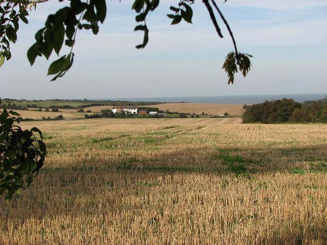 View near Eastchurch