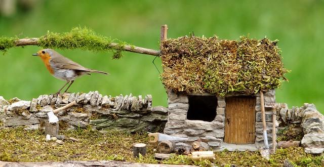 robin new stone house  (2)
