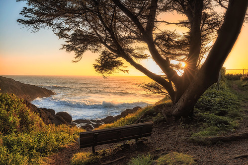 sunset sunstar surf ocean tree bench oregon oregoncoast