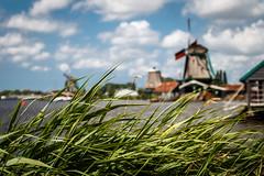 Hidden windmills